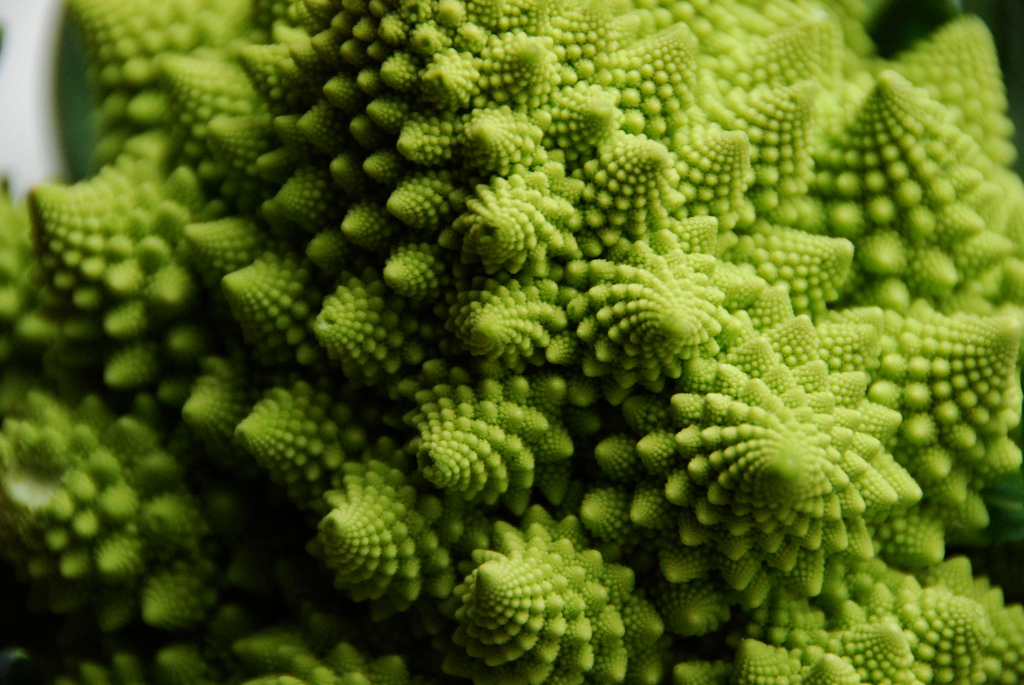 romanesco photo