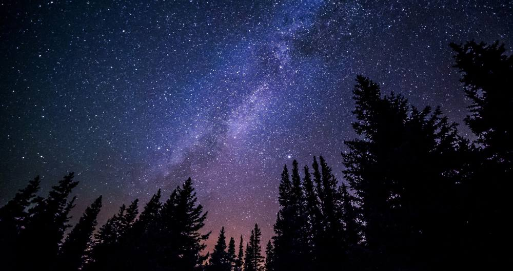 Nacht. Die Milchstraße und Sternehimmel, darunter die Silhouetten von Nadelbäumen