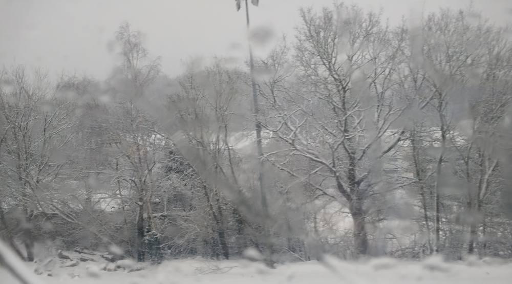 Schneelandschaft mit Bäumen und Häusern, verschwommen weil aus dem Zug heraus fotografiert.