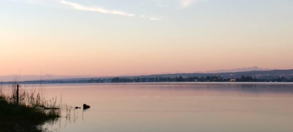 Sonnenaufgang am Bodensee. Links ist ein wenig Ufer zu sehen, sonst nur See und Himmel, beide rosa gefärbt. Am Horizont sind Seeufer und Berge zu sehen.