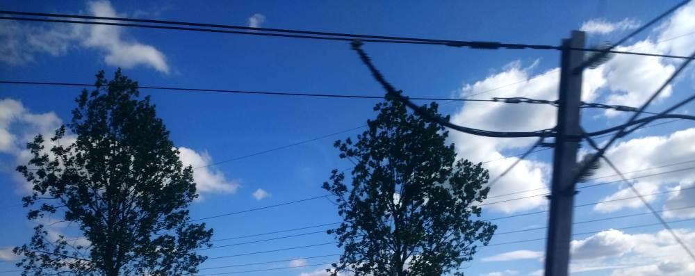 Stromleitungen, Bäume und tiefblauer Himmel