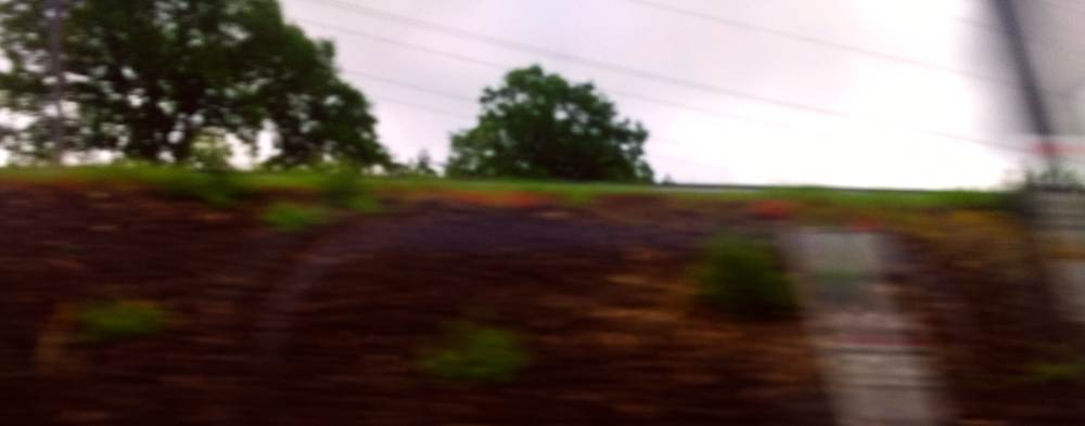 Bahndamm im Vorbeifahren