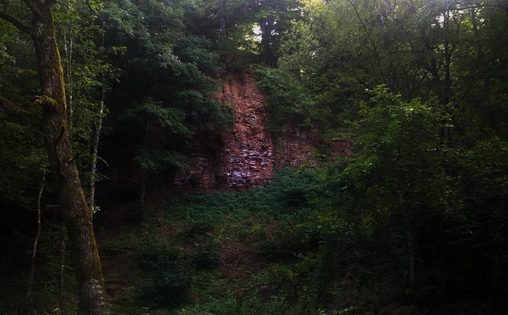 Wald, rote Felswand und viele Bäume