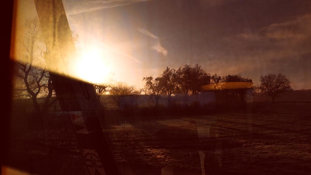 Obstwiese im Sonnenaufgang, aus dem Zug heraus fotografiert.