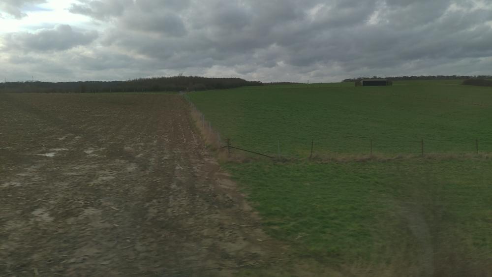 schlammiges Feld, grüne Wiese, graue Wolken